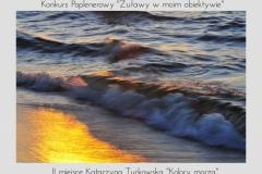 "Katarzyna Turkowska ""Kolory morza"""